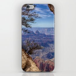 A Window to the Grand Canyon iPhone Skin