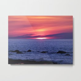Painted By Nature Metal Print