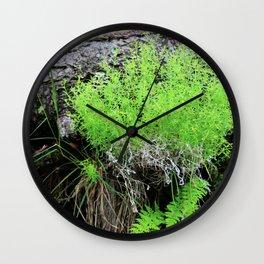 Green Forest Ferns Wall Clock