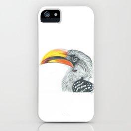 Yellow-billed hornbill iPhone Case