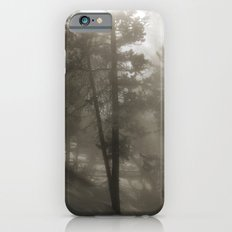 Sunlight and Fog Through Trees Slim Case iPhone 6s