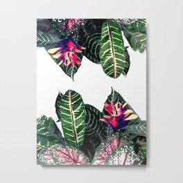 Tropical Theme 1 Metal Print