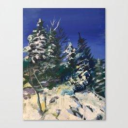 Forêt nordique d'hiver Canvas Print