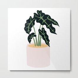 Elephent Ear Plant Metal Print