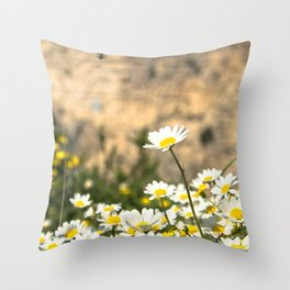 Spring Camomile Throw Pillow