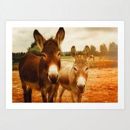 Hello Donkey Art Print