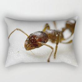 Extreme Macro Ant on a Clematis petal Rectangular Pillow