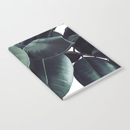Ficus Elastica #13 #decor #art #society6 Notebook
