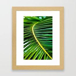 Green Palm Poetry Framed Art Print
