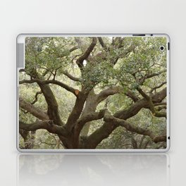 Live Oak Laptop & iPad Skin