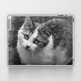 Molly, Portrait n. 1 Laptop & iPad Skin