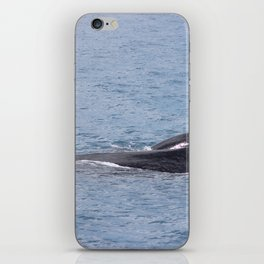 Mother and Calf in Hervey Bay iPhone Skin