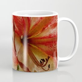 Determined Amaryllis Coffee Mug