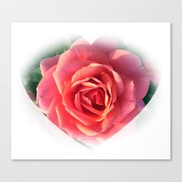 Westminister Pink Canvas Print