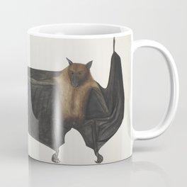 Vintage Indian Fruit Bat Illustration (1782) Coffee Mug