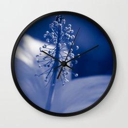 Enchanting Moments - Pua Aloalo - Koki'o Ke'oke'o - Hibiscus Arnottianus - Hawaiian White Hibiscus Wall Clock