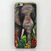 dumbo iPhone & iPod Skins featuring Dumbo by Megan Bailey Gill