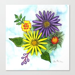 Aster Flowers Canvas Print