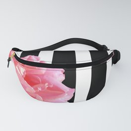 Pink roses on black and white stripes Fanny Pack