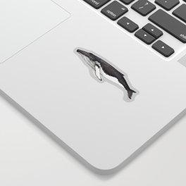 North Atlantic Humpback whale Sticker