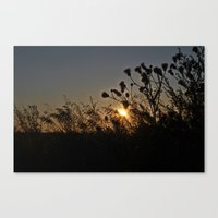 sublime Canvas Prints featuring Sublime by Dorothy Pinder