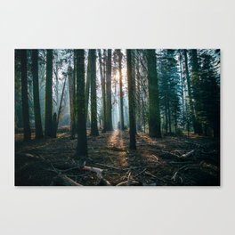 The woods are deep Canvas Print