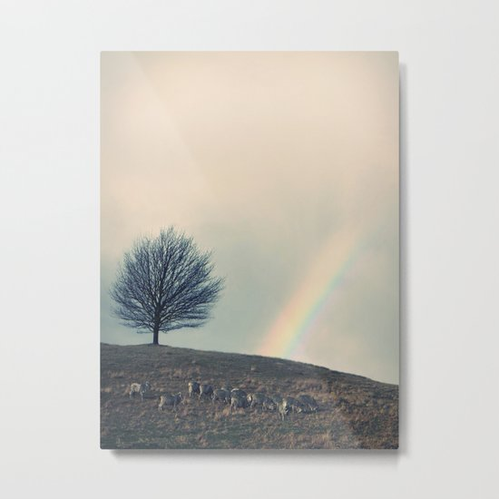 Chasing rainbows and counting sheep. Same thing really. Metal Print