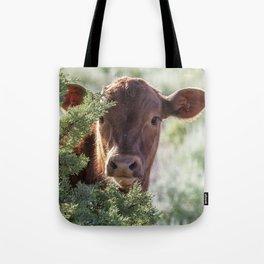 Shy Calf Tote Bag
