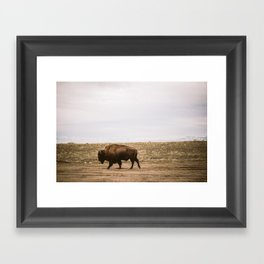 Walking all alone Framed Art Print