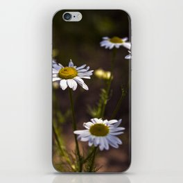 Of Power and Success iPhone Skin