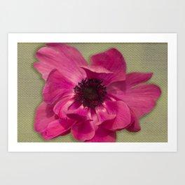 Pink Anemone on Linen Texture Art Print