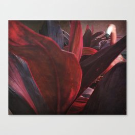 Blend In Canvas Print