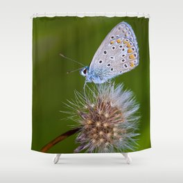 The butterfly and the delicate plant Shower Curtain