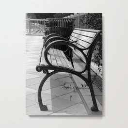 The Park Metal Print