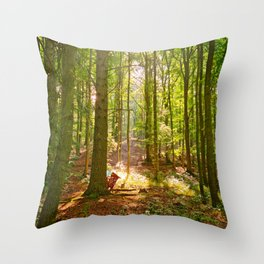 Light in dark Throw Pillow