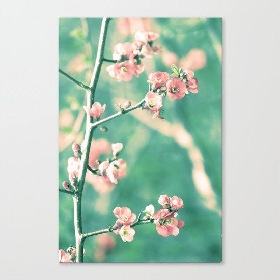 Softly Spring Love Canvas Print