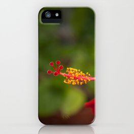 Red Hybiscus iPhone Case