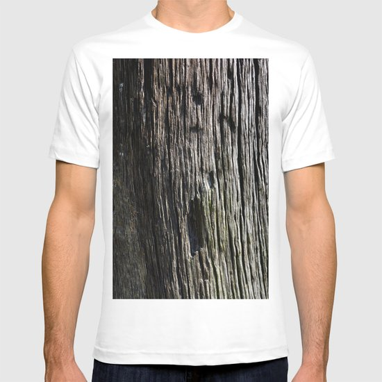 Tree Trunk 1000 years old T-shirt