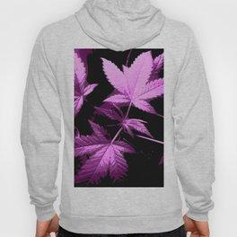 DaPlant Purple - #GreenRush Collective Hoody