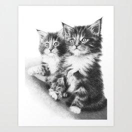 Double Dose of Kitten Cuteness Art Print