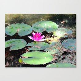 Beijing Imperial garden | Jardin Impérial Canvas Print