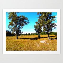 Fall in Florida  Art Print