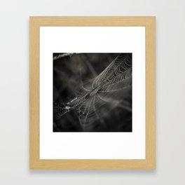 Early morning's magic II Framed Art Print