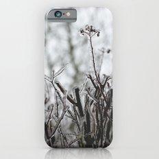 frozen. iPhone 6s Slim Case