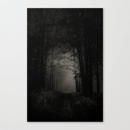 SEARCHING FOR THE LIGHT Canvas Print