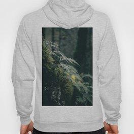 Ferns VII Hoody