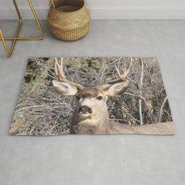 Watercolor Deer, Mule 22, Crestone, Colorado, Southern Colorado Splendor Rug