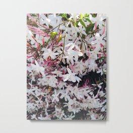 Sweet Jasmine Dream Metal Print