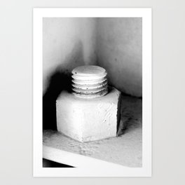 Nuts and... Art Print