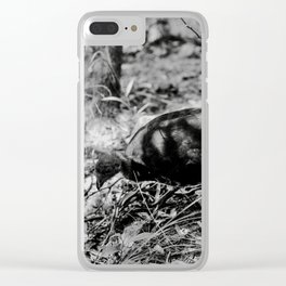 Birdy looking for food Clear iPhone Case